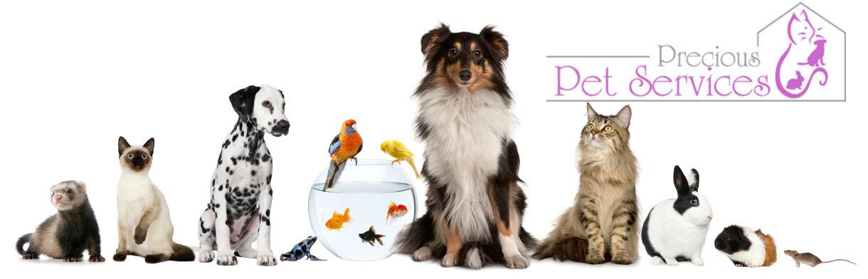 Precious Pet Services